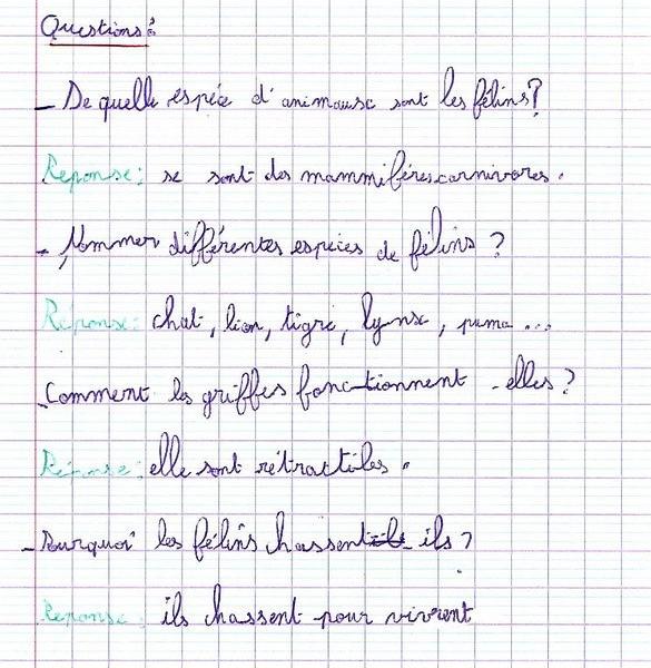 Ecole Des 3 Merlettes Les F 233 Lins Par Servane
